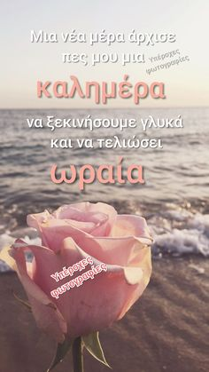 Best Quotes, Love Quotes, Nice Sayings, Good Morning Tuesday, Happy, Greek, Night, Diy, Decor