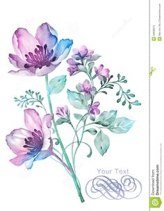 watercolor-illustration-flower-simple-background-decoration-as-50906874.jpg (1009×1300)
