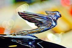 Rolls~Royce