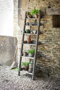 Our rustic wooden Shelf Ladder is not only suitable outdoors as a decorative stand for plant pots or as a useful additional storage unit for any potting shed or greenhouse but would look marvellous indoors too for a more rustic relaxed style Wooden Ladder Shelf, Rustic Wooden Shelves, Old Ladder, Ladder Decor, Ladder Shelves, Rustic Ladder, Leaning Ladder, Ladder Storage, Book Shelves