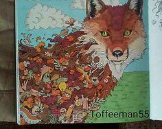 Animorphia Reynard Coloring BookColouringFoxes