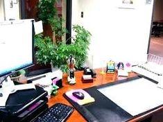 219 Best Office Decoration Images