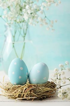 Spring - Easter Eggs in Robin Blue Easter Bunny, Easter Eggs, Easter Table, Ostern Wallpaper, Easter Backgrounds, Diy Ostern, Easter Colors, Happy Spring, Egg Decorating