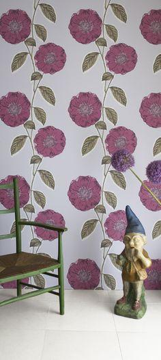 Jocelyn Warner Poppy Viola Wallpaper