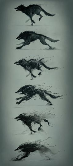 wolf-like creature evolution
