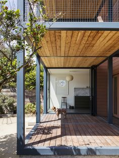 Los Angeles bungalow gets gorgeous modern renovation - Curbed - Bungalows, Bungalow Homes, Park Homes, Outdoor Spaces, Outdoor Decor, Contemporary Architecture, Steel Frame, Home Renovation, Pergola