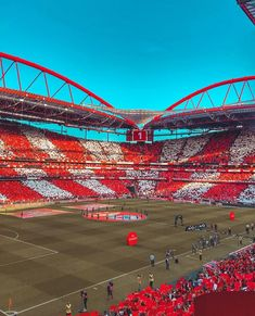 Soccer Stadium, Football Stadiums, Benfica Wallpaper, Sc Internacional, Hail Mary, Football Boots, Baseball Field, Arsenal, True Love