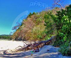 Marieta a la sombra en la playa. Punta Guiones. Costa Rica.