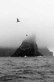 Image result for st kilda sea stacks