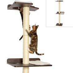 INTERACTIVE DESIGN TO IMPROVE YOUR CAT'S WELLNESS: For cats who love to climb & perch up high. Great stimulation for young kittens AND older cats. No age discrimination. Stretch, scratch, jump, climb, perch, lounge & play MODERN CAT FURNITURE: Compared to the over-engineered cat trees which clutter your living space and actually limit your cat from climbing. That's what some cats believe curtains are now for :) SAFETY FIRST EASY WALL ASSEMBLY: (i) Includes zinc drywall anchors that can b Cool Cat Trees, Cool Cats, Large Cat Tree, Cat Climber, Cat Climbing Tree, Modern Cat Furniture, Dog Furniture, Furniture Stores, Cat Store
