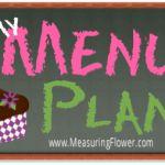 My Trim Healthy Mama approved menu plan! Trim Healthy Recipes, Thm Recipes, Healthy Foods, Healthy Eating, Trim Healthy Mama Book, Plan Ahead Meals, Counting Carbs, Thing 1, Menu Planning