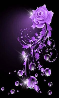 Lovely Rose Flowers In Purple BG - Phone Wallpaper / Background / Screensaver Purple Love, All Things Purple, Purple Rain, Shades Of Purple, Purple Flowers, Pink Purple, Lilac, Night Flowers, Purple Stuff