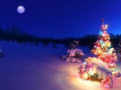 23 Best Christmas Desktop Images Christmas Decorations Diy