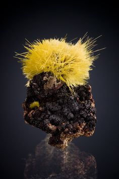 Uranophane on matrix, Madawaska Mine (Faraday Mine), Faraday Township, Hastings Co., Ontario, Canada, 3cm tall. Crystal spray is 2.3cm across. Individual needles to +/- 1.4cm long. Bancroft Mineral Museum specimen, Michael Bainbridge photo.