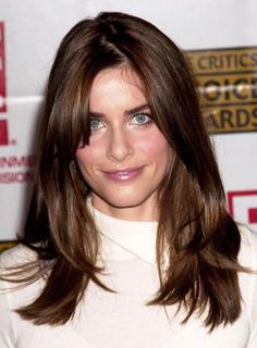 Amanda Peet Long, Straight, Brunette Hairstyle with Bangs