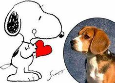 QUER UM BICHO?: Os mais famosos personagens caninos dos desenhos animados