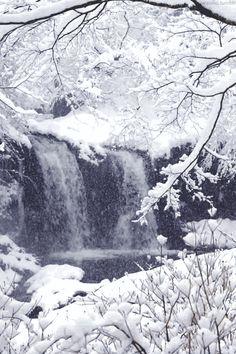 Cascade sous la neige