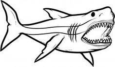 Megalodon Shark Step by Step Dinosaurs Animals FREE Online Drawing unique Shark Drawing Coloring Page Baby Great White Shark, Great White Shark Drawing, Great White Shark Attack, Drawing For Kids, Drawing Drawing, Drawing Tips, Drawing Ideas, Cartoon Drawings, Animal Drawings