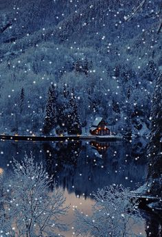 Merry Christmas Gif, Christmas Scenery, Winter Scenery, Christmas Pictures, Christmas Art, Beautiful Christmas, Winter Christmas, Winter Snow, Winter Images