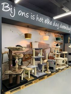 Haarlem updates - Nieuws en updates van Haarlem e.o. Op 4 augustus 2021 opent Jumper De diersuper een filiaal in Haarlem en dat moet gevierd worden. De dierenspeciaalzaak pakt flink uit en heeft de Kerstman uitgenodigd om nu al cadeautjes uit te delen. Jumper heeft inmiddels in Nederland al meer dan tachtig grote dierenwinkels en opent nu een Haarlemse vestiging. De keten staat vooraan […] Lees Kerst bij nieuwe dierenspeciaalzaak Jumper en meer op Haarlem updates. Furniture, Home Decor, Decoration Home, Room Decor, Home Furnishings, Home Interior Design, Home Decoration, Interior Design, Arredamento