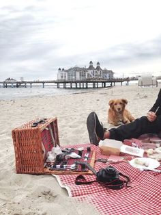 picknick-am-meer