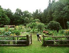 This is my dream garden.