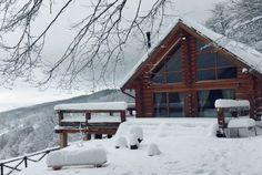 Green Cottage - O cabană superbă, chiar în grădina Carpaților - Wildventure Romania, Montana, Cottage, Holidays, House Styles, Green, Home Decor, Cabin, Flathead Lake Montana