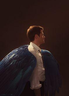 Blue wings by euclase on DeviantArt