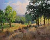 The Sheltering Grove Paso Robles Central Coast California oil painting landscape by Karen Winters.