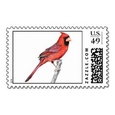 Cardinal Postage Stamps. It is really great to make each letter a special delivery! Add a unique touch to invites or cards with your own photos or text. Just click the image to learn more!