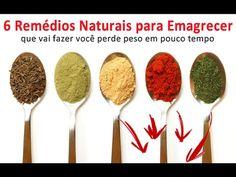 6 Remédios Naturais para Emagrecer que vai fazer você perde peso em pouc...