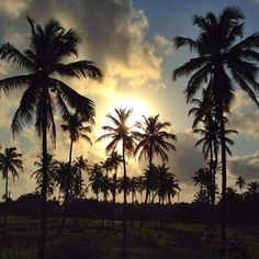 Muro Alto. Sunset. Pernambuco. Brazil. - Photo by Sergio Dourado.