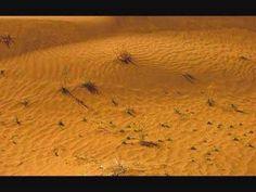 Keyhan Kalhor's way of describing the desert - YouTube