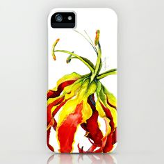 Gloriosa Lily iPhone & iPod Case by Cindy Lou Bailey  - $35.00.  This lovely Gloriosa Lily has a unique appearance; the wavy petals curl backward as the flower grows, revealing the stamen and pistils. This lily has vibrant tones of green, red and yellow, giving it an exotic appearance. #lily #gloriosa #gloriosalily #botanicalillustration #illustration #watercolor #exotic #vivid #red #green #yellow #prints #iphone #iphonecase
