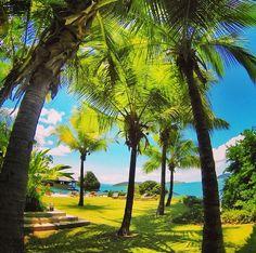 - A photo of Pebble Beach, Hamilton Island. Looks so nice. Holiday Destinations, Travel Destinations, Island Holidays, Hamilton Island, Jet Plane, Aussies, Island Beach, Pebble Beach, Great Barrier Reef