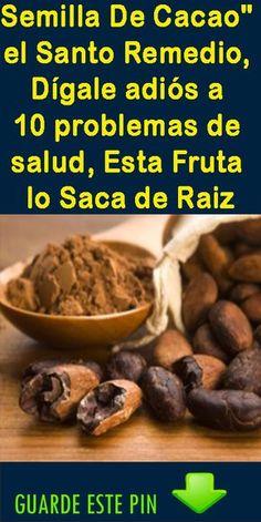 Las Mejores 10 Ideas De Granos De Cacao Granos De Cacao Chocolate A La Taza Arbol De Cacao