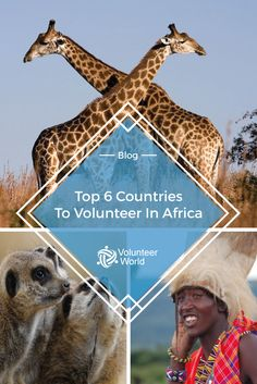 Have a look at our top 6 volunteer countries in Africa!