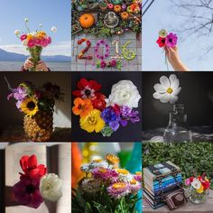 Seeking color in the doldrums of winter. These are my favorite floral pics from 2015! I arranged this in the print module of Lightroom which I'd like to get better at in 2016.  so if you know any tricks I'm all ears