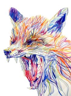 Foxes illustration by Claudine O'Sullivan