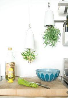 Upside Down Kitchen herb garden from Boskke