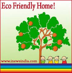 Making Eco-Friendly Improvements to Your Home!