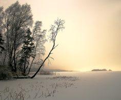 Photographer: Aleksandr Batura -