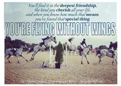 Flying without wings Rodeo Quotes, Equine Quotes, Equestrian Quotes, Equestrian Problems, Horse Jumping Quotes, Horse Riding Quotes, My Horse, Horse Love, Horse Tips