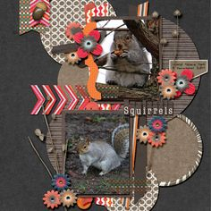 Duo Volume 1: Template Set - Jen C designs  Through the Year: Autumn Collection - Jen C Designs  Through the Year: Essentials Vol 1 - Jen C Designs