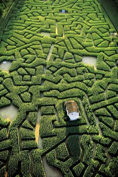 Corn labyrinth in Cordes-sur-Ciel, Tarn, France // Yann Arthus-Bertrand Places Around The World, Oh The Places You'll Go, Around The Worlds, Landscape Architecture, Landscape Design, Garden Design, Beautiful World, Beautiful Gardens, Beautiful Places