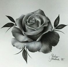 dessins de tatouage 2019 Incredible Realism Rose Art by - Tattoo Designs Photo Trendy Tattoos, New Tattoos, Body Art Tattoos, Tattoo Drawings, Sleeve Tattoos, Cool Tattoos, Rose Drawings, Tattoo Art, Pink Tattoos