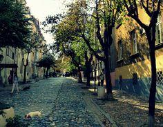Kosancic Crescent, Belgrade.
