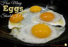 How Many Eggs Should I Eat a Day? A Week? | Fresh Eggs Daily®