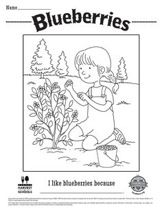 Blueberry Free Printable Children's Coloring Sheet Food Hero