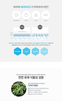 [PAEON파에온]큐템 데일리 앰플에센스 Web Layout, Layout Design, Cosmetic Web, Beauty Web, Promotional Design, Event Page, For Facebook, Web Banner, Web Design Inspiration